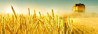 农用机械设备